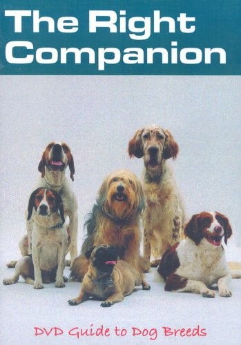 Right Companion DVD Guide To Dog Breeds  The