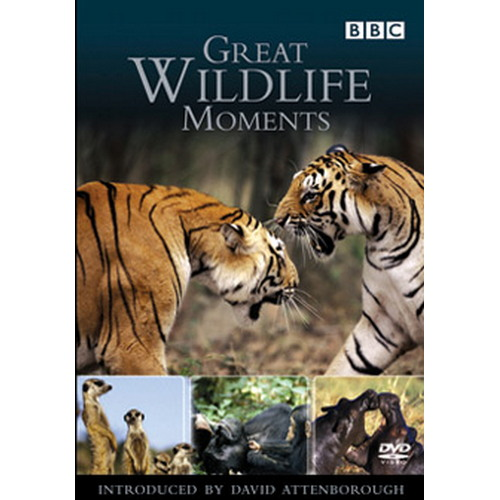 Great Wildlife Moments With David Attenborough (DVD)