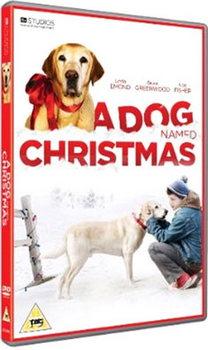 A Dog Named Christmas (DVD)