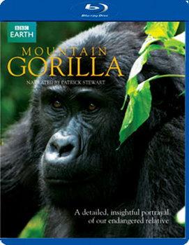 Mountain Gorillas (Blu-Ray)