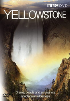 Yellowstone: Tales From The Wild (DVD)