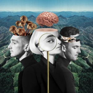 Clean Bandit - What Is Love? (Music CD)