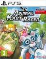 Animal Kart Racer (PS5)
