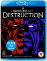 WWE: Brothers Of Destruction - Greatest Matches (Blu-ray)