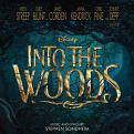 Various Artists - Into the Woods (Music CD)