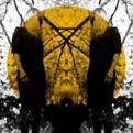 Austra - Feel It Break (vinyl)