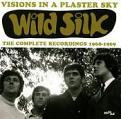 Wild Silk - Visions in a Plaster Sky (The Complete Recordings 1968-1969) (Music CD)