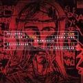 Hellborg/Lane/Selvaganesh/Umashankar - Icon (Music CD)