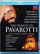 Petra Salutes - Pavarotti Memorial Concert (Blu-Ray)