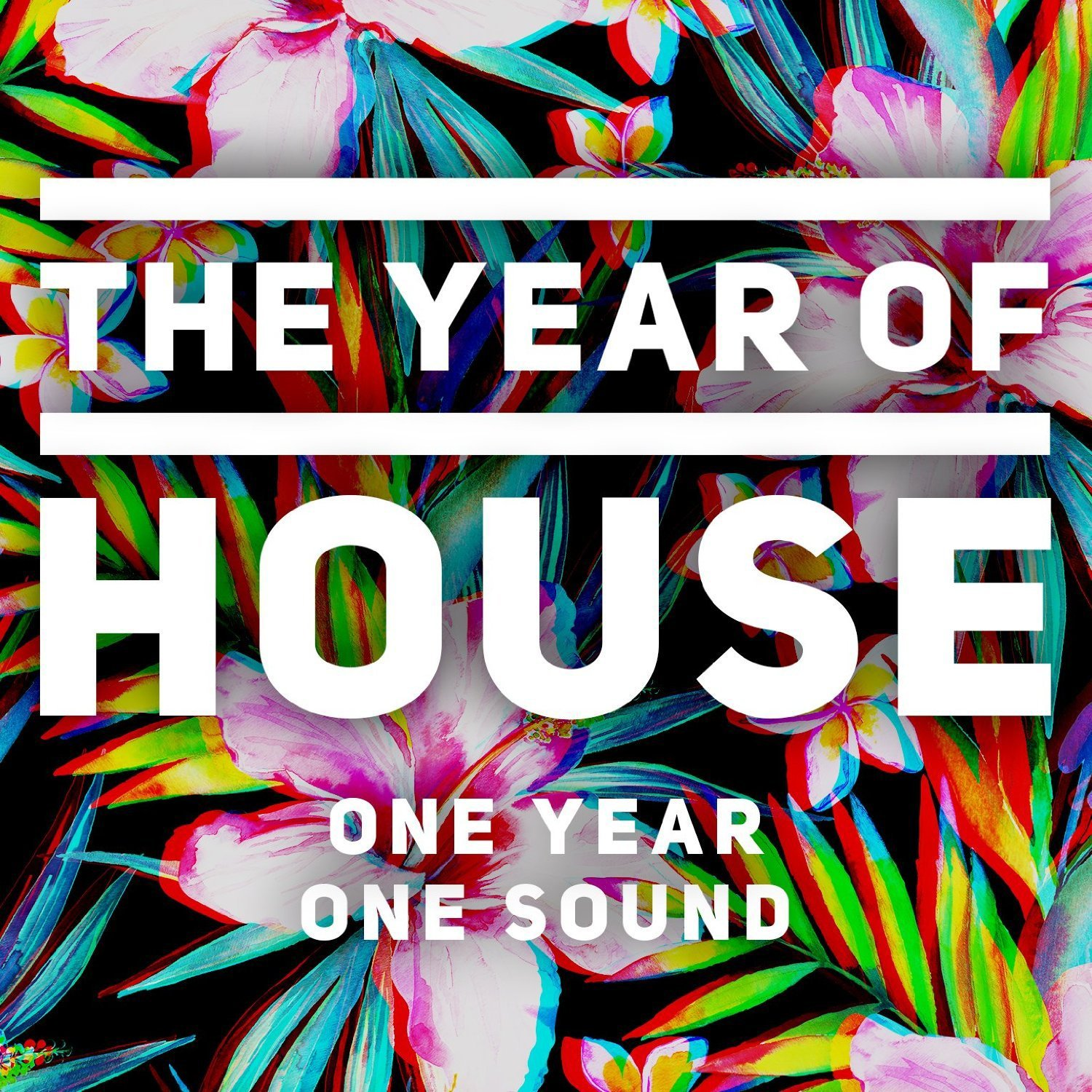 Various Artists - The Year Of House