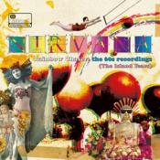 Nirvana - Rainbow Chaser: The 60s Recordings (The Island Years) (Music CD)