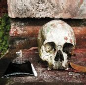 Various Artists - Gamelan of the Walking Warriors (Gamelan Beleganjur and the Music of the Ngaben Funerary Ritual in Bali) (Music CD)