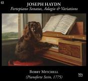 Hadyn: Fortepiano Sonatas  Adagio & Variations (Music CD)