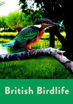 British Birdlife (DVD)