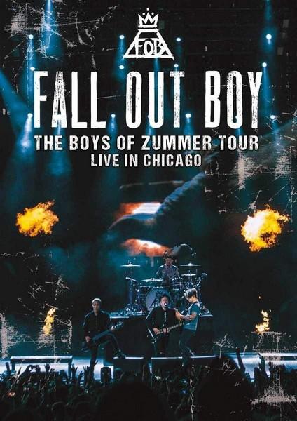 Fall out Boy: Boys of Zummer (DVD)