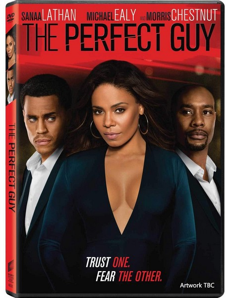 The Perfect Guy (DVD)