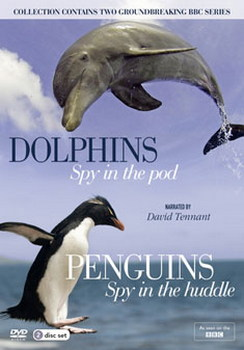 The Spy Collection - Penguins And Dolphins (DVD)
