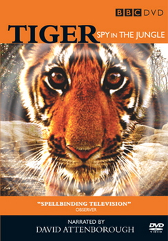 Tigers - Spy In The Jungle (DVD)