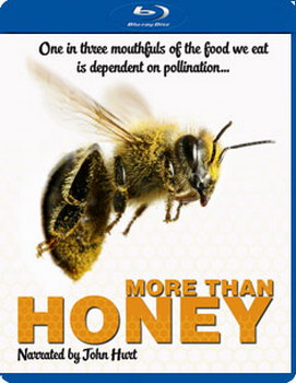 More Than Honey (Blu-Ray)
