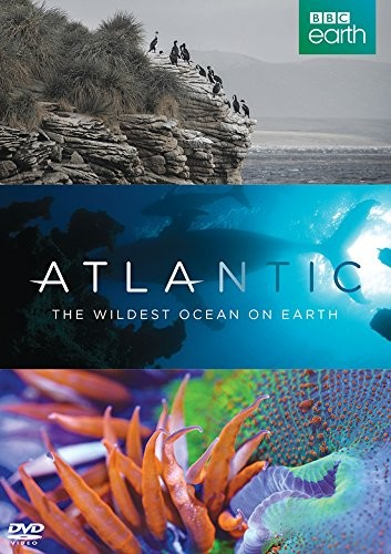 Atlantic: The Wildest Ocean On Earth (DVD)