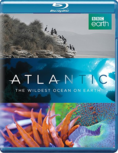 Atlantic: The Wildest Ocean on Earth (Blu-ray)