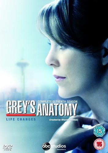 Grey'S Anatomy - Season 11 (DVD)